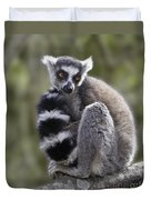 Ring-tailed Lemur Duvet Cover