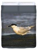 Sandwich Tern Duvet Cover
