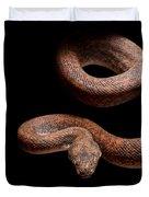 Savu Python On Tree Branch Duvet Cover