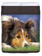 Shetland Sheepdog Duvet Cover