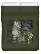 Snow Leopard On The Prowl Duvet Cover