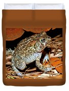 Southern Toad Bufo Terrestris Duvet Cover
