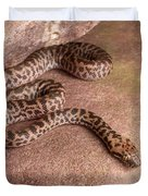 Spotted Python Antaresia Maculosa Duvet Cover