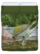 Tennessee Warbler Duvet Cover
