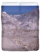 Vintage Death Valley By Lynn Bramkamp Duvet Cover