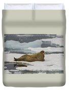 Walrus Resting On Ice Floe Duvet Cover