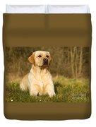 Yellow Labrador Duvet Cover