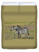 Zebra Males Fighting Duvet Cover