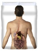 The Digestive System Duvet Cover