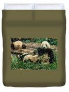 3722-panda -  Colored Photo 2 Duvet Cover