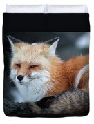A Red Fox  On The Summit Of Mt Duvet Cover