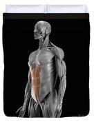 Abdominal Muscles Duvet Cover