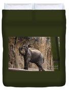 Asian Elephant Duvet Cover