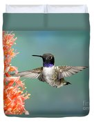 Black-chinned Hummingbird Duvet Cover