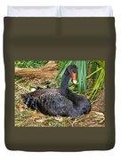 Black Swan At Nest Duvet Cover