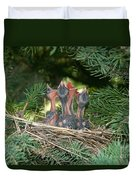 Cedar Waxwings Duvet Cover by Linda Freshwaters Arndt