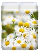 Chamomile Flowers Duvet Cover by Elena Elisseeva