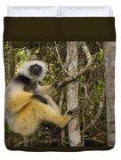 Diademed Sifaka Madagascar Duvet Cover