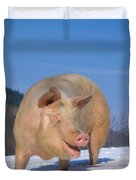 Domestic Pig Duvet Cover by Hans Reinhard