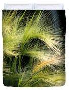 Hordeum Jubatum Grass Duvet Cover