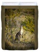 Kangaroo Duvet Cover