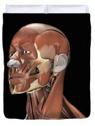 Muscles Of The Head And Neck Duvet Cover