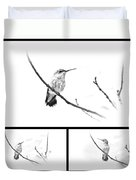 Ruby-throated Hummingbird - Immature Female - Black And White - Archilochus Colubris  Duvet Cover