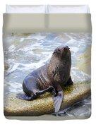 Sea Lion Duvet Cover by Alexey Stiop