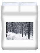 Winter In Pike National Forest Duvet Cover