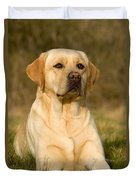 Yellow Labrador Duvet Cover