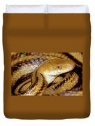 Yellow Rat Snake Duvet Cover
