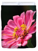 Zinnia From The Whirlygig Mix Duvet Cover