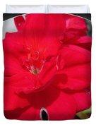 Zonal Geranium Named Candy Cherry Duvet Cover