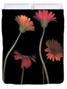 4daisies On Stems Duvet Cover