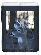 8 Point Buck Duvet Cover