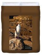 Adult Nz Yellow-eyed Penguin Or Hoiho On Shore Duvet Cover