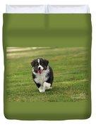 Australian Shepherd Puppy Duvet Cover