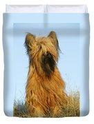 Briard Dog Duvet Cover