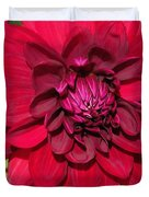Dahlia Named Nuit D'ete Duvet Cover