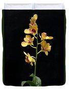 Dendrobium Orchid Duvet Cover