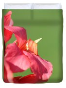 Dwarf Canna Lily Named Shining Pink Duvet Cover by J McCombie