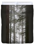 Foggy Coast Redwood Forest Duvet Cover