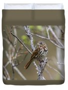 Fox Sparrow Duvet Cover