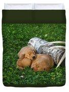 Golden Retriever Puppies Duvet Cover by Linda Freshwaters Arndt