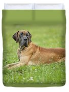 Great Dane Duvet Cover