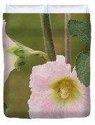 Hollyhock Named Indian Spring Pink Duvet Cover