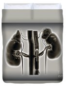 Kidneys And Adrenal Glands Duvet Cover