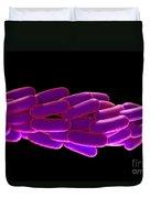Legionella Pneumophila Bacteria Duvet Cover