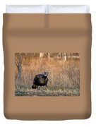 Male Eastern Wild Turkey Duvet Cover