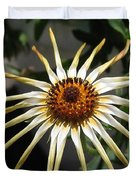 Osteospermum Named African Moon Duvet Cover